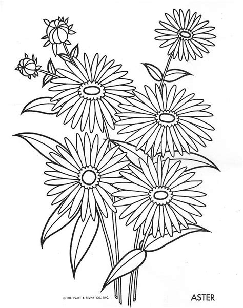 Flowers to Color   Flower coloring pages, Flower drawing