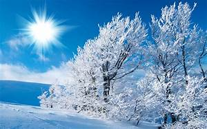 Free Winter Nature Wallpapers - Wallpaper Cave