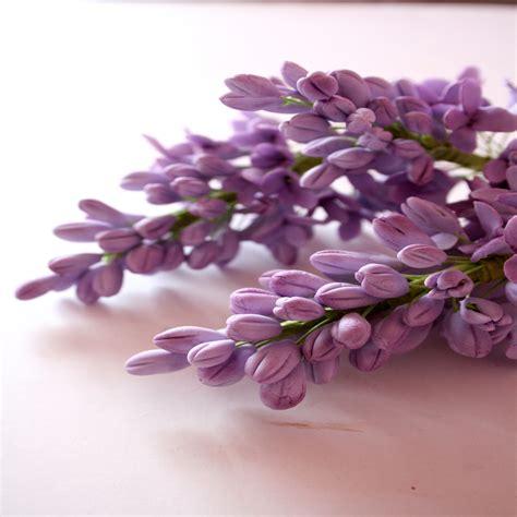 sugar flowers purple lilacs