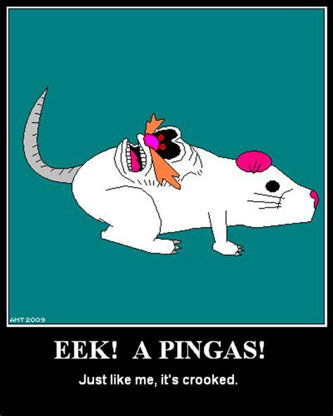 Pingas Meme - eeek a pingas pingas know your meme