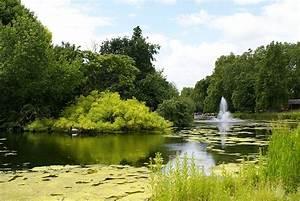 Parks In London : pictures an adventure that awaits me ~ Yasmunasinghe.com Haus und Dekorationen