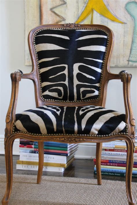 beautiful chair covered   zebra hide rug animal
