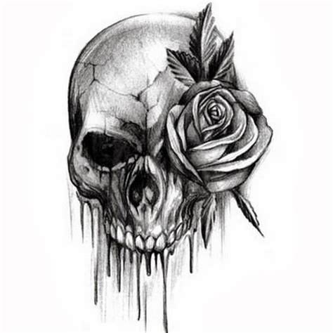 Best 25+ Skull And Rose Drawing Ideas On Pinterest Skull