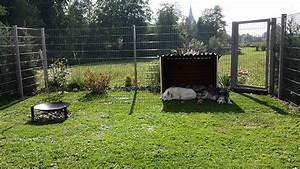 Kleiner Zaun Für Hunde : neuer zaun alte hunde nordic dogs ~ Sanjose-hotels-ca.com Haus und Dekorationen
