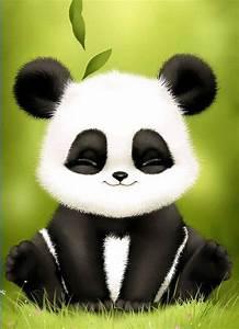 Panda Bobble Head Live Wallpaper - Free Android. | Panda ...
