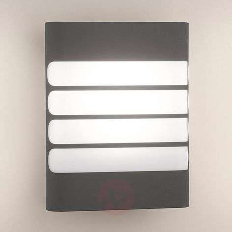 philips raccoon led outdoor wall light anthracite lights co uk