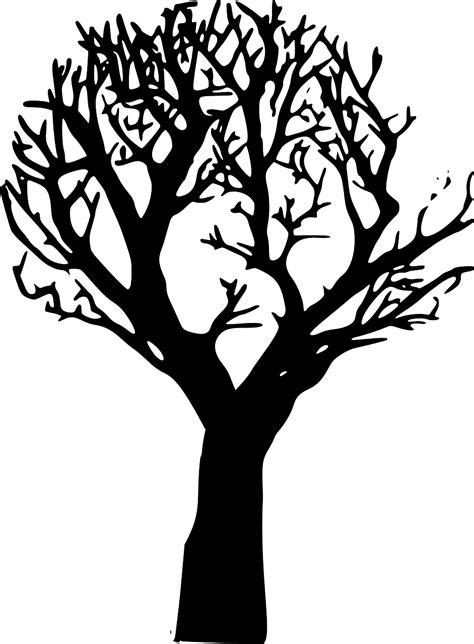 draw  tree  printable tree stencils  pics