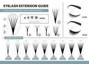 Fake Eyelash Size Chart Lash Extensions Size Guide Lash Extension Weight Chart In