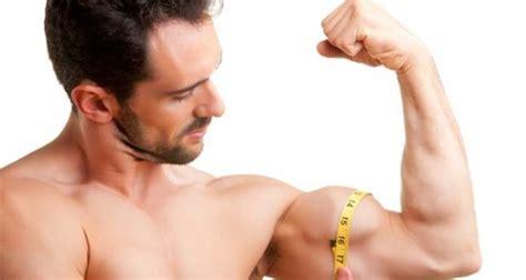4 conseils bas 233 s sur des preuves scientifiques pour muscler les bras