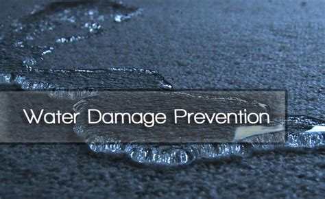 Detecting Water Damage In Your Home  Water Damage & Mold. Internet Providers Idaho Falls. Retirement And Medicare Web Design Background. Freelance Graphic Designer Hourly Rate. Top Acting Schools In The Us. Gastric Sleeve Bypass Surgery. Columbus Family Dental Center. Northern Insurance Company Of New York. Nursing School Gpa Requirements