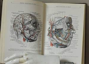 1918 Manual Of Surgical Anatomy  Army Navy Medical Book