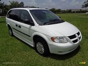 2004 Dodge Grand Caravan Se In Stone White Photo  42