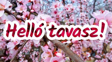 Helló tavasz! - virágzó díszfa - YouTube