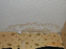 drywall wikipedia