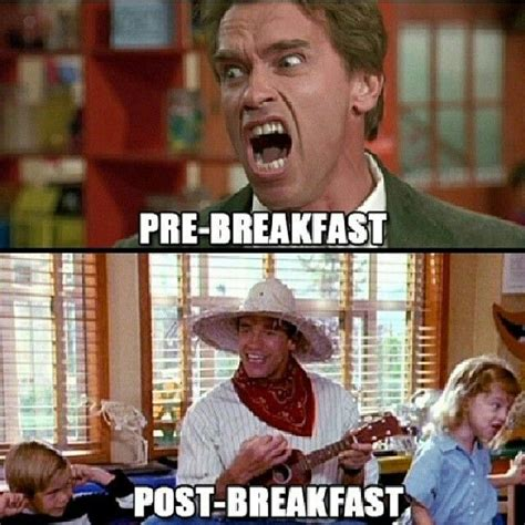 Funny Breakfast Memes - 126 best images about funny gym memes on pinterest gymrat fitness humor and funny gym