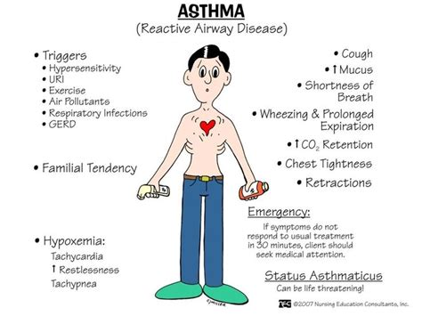 Pathophysiology Of Asthma  Nursing School  Pinterest. Cheap Poster Size Prints. Christianity Stickers. Advertising Agency Murals. Claim Signs. Art Journal Lettering. General Signs. Iron Cross Decals. Columbia College Chicago Murals