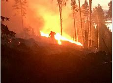 Extreme heat wave causes numerous wildfires in Sweden
