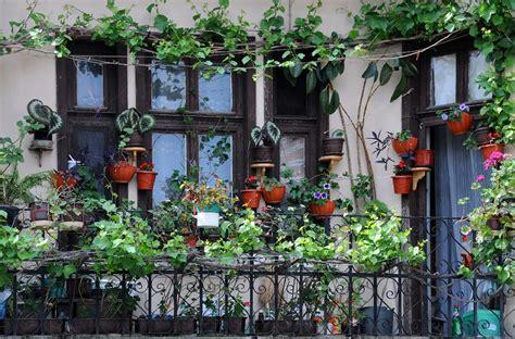 Radoši - kā izveidot dārzu uz balkona? | VIASMS.LV