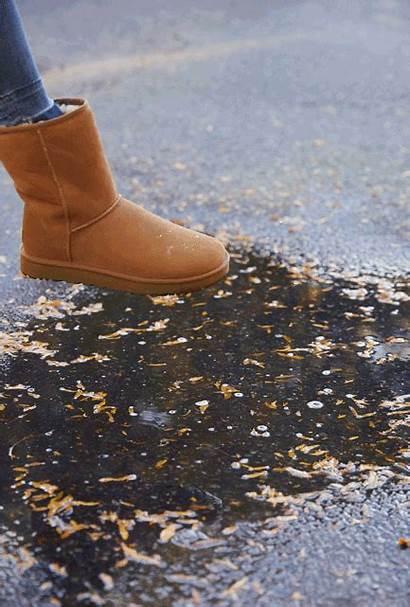 Boots Ugg Heels Zappos Sneakers Womens Short
