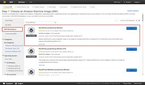 build  launch  wordpress site aws