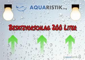 Welche Fische Passen Zusammen Aquarium : besetzungsvorschlag besatz 200 240 liter aquarium ~ Lizthompson.info Haus und Dekorationen