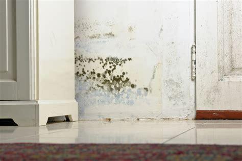 wasserschaden keller mietwohnung wasserschaden in der mietwohnung 187 das sollten sie wissen