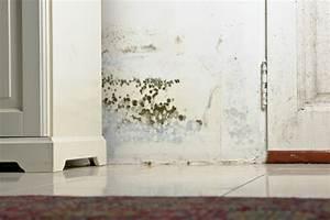 Wasserschaden Mietwohnung Mietminderung : wasserschaden in der mietwohnung das sollten sie wissen ~ Orissabook.com Haus und Dekorationen