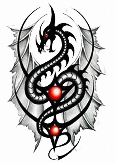 Dragon Tattoo Designs Tribal Tattoos Awesome Celtic