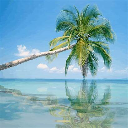 Vacation Gifs Nature Peace Mind Vacations Scene