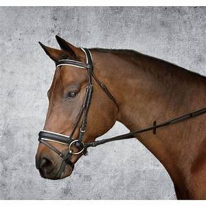 Dover Saddlery Everyday Single Crown Dressage Bridle ...