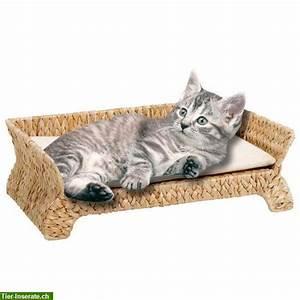 Katzen Fernhalten Von Möbeln : karlie deluxe katzen sofa banana leaf zu verkaufen tierinserat 267983 ~ Sanjose-hotels-ca.com Haus und Dekorationen