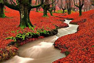 1000+ images about Beautiful nature on Pinterest Nature