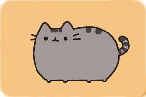 draw  cat drawingnow