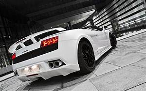 White Lamborghini Gallardo Car HD Wallpapers HD Wallpapers
