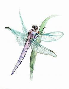134 Best Watercolor Insects Images On Pinterest