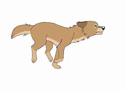 Running Dog Scratch Animations