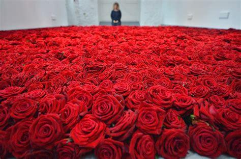 We did not find results for: 20 Gambar Foto Bunga Mawar Merah ~ Ayeey.com