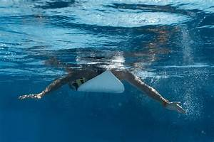 The Ultimate Guide To Shark Repellents And Deterrents