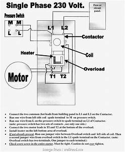 How To Wire A  Light New 277 Volt Wiring Diagram Single