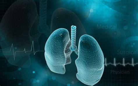 pulmonary fibrosis lung repair  stem cells