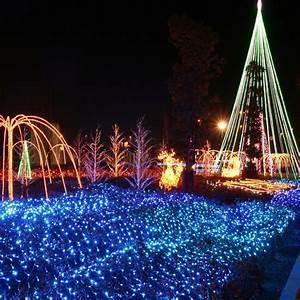 Lichtervorhang Innen Fenster : weihnachten led lichternetz lichtervorhang innen au en garten lichterkette ip65 ebay ~ Orissabook.com Haus und Dekorationen