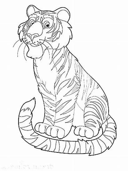 Coloring Animal Exotic Tiger Safari Happy Pages