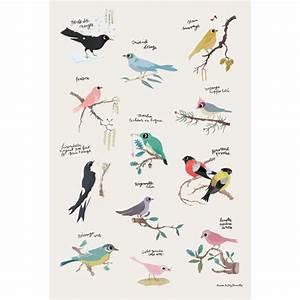 poster affiche oiseaux de tinou le joly senoville With affiche chambre bébé avec achat fleurs jardin