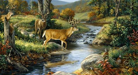 nature murals for walls wall mural nature wall mural are unique and most decorator for any of your rooms wall