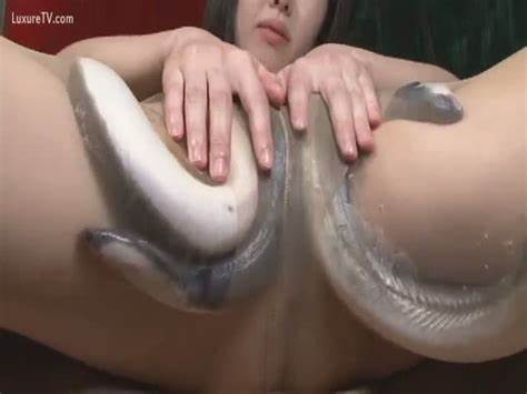 Hardness Inside Her Soapy Aperture Eels Plays With A Jizz