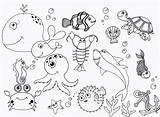 Coloring Sea Under Pages Ocean Themed sketch template