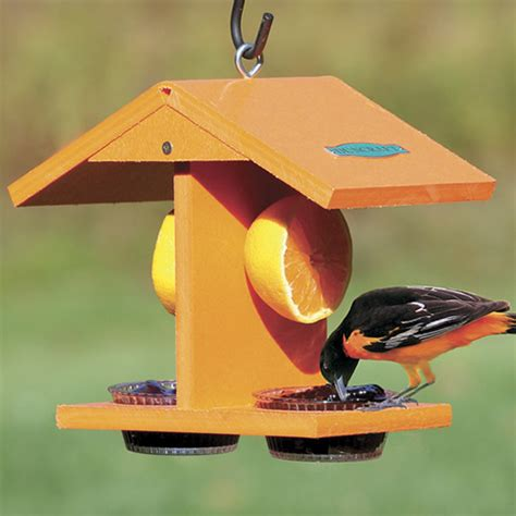 Oriole Feeder Grape Jelly by Duncraft Duncraft 4077 Eco Friendly Oriole Fruit