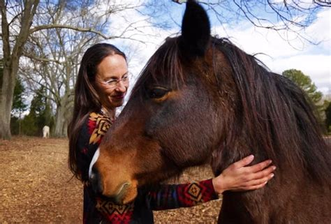 horses horse native before running culture were settlers yes came yvette collin says story study there historical navajo ict americas