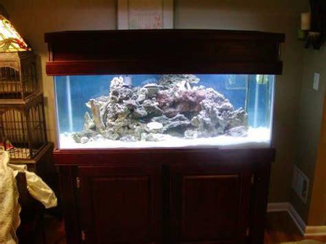 gallon salt water aquarium stand hood light filter