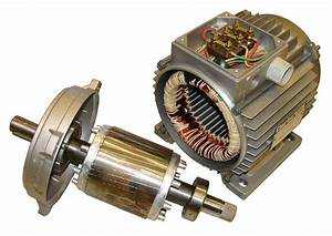 Squirrel Cage Rotor Induction Machine